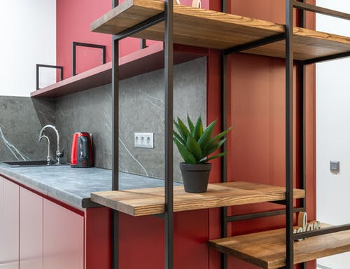 Interior of modern organization with wooden shelves with potted green cactus next to open kitchen with cupboards