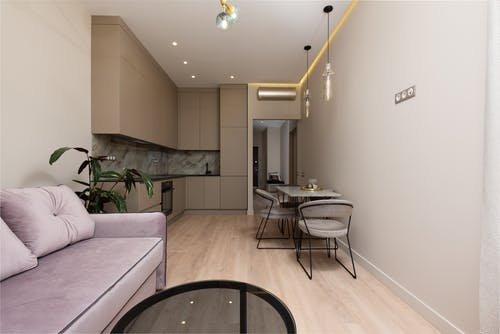 Interior of contemporary home with sofa with pillows next to open kitchen with cupboards near table with chairs near potted plant