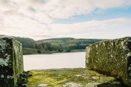 Free stock photo of calm waters, forest, reservoir, stones