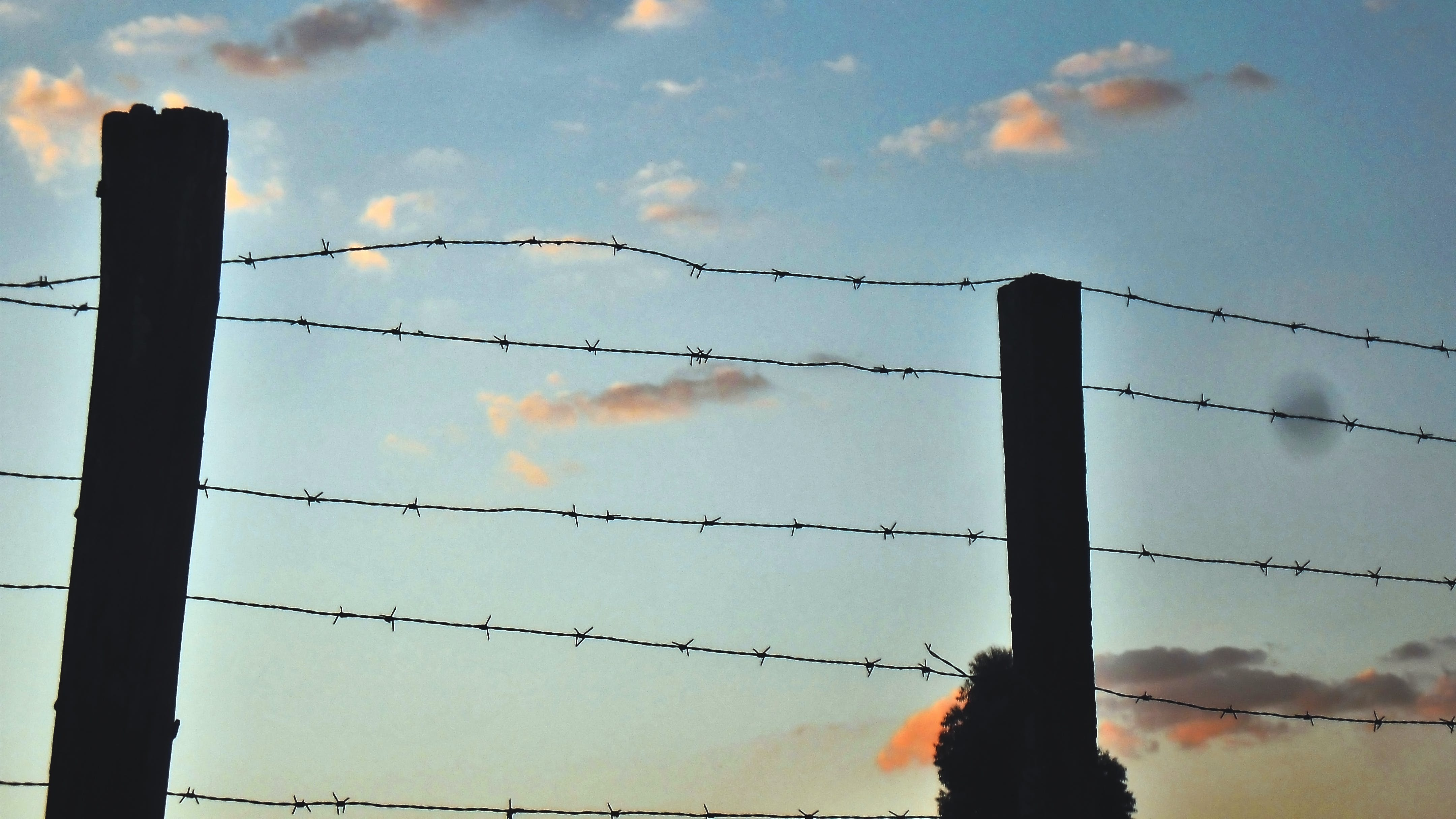 Free stock photo of barbed wire, gate