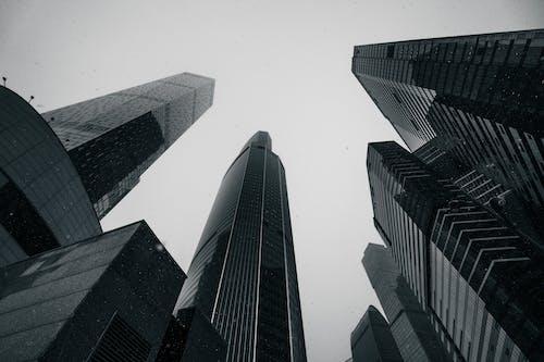 Immagine gratuita di architettura, articoli di vetro, business
