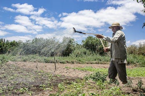Farmer Watering Crops