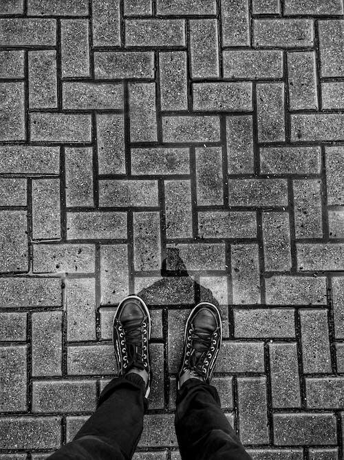Immagine gratuita di architettura, bianco e nero, cemento