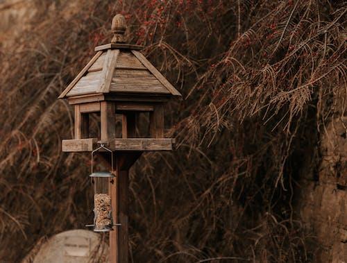 Безкоштовне стокове фото на тему «дерев'яний, кореспонденція, почтовий ящик»