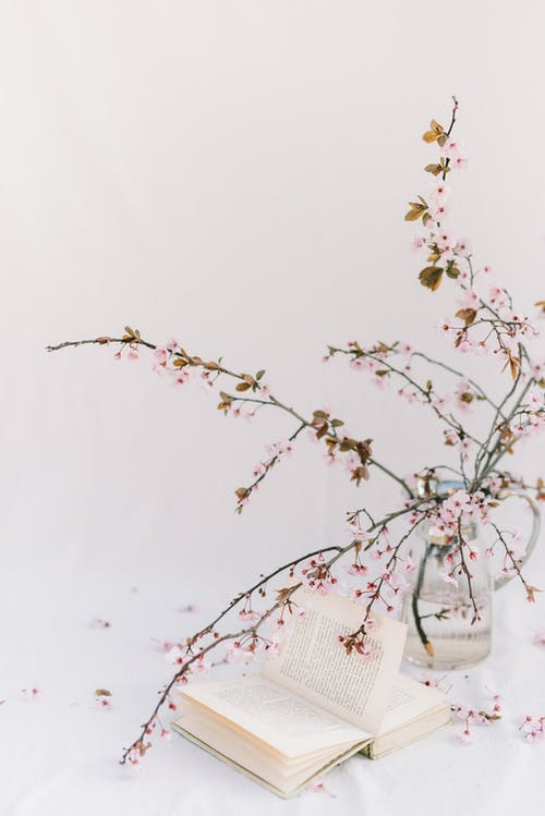 White Cherry Blossom in Clear Glass Vase