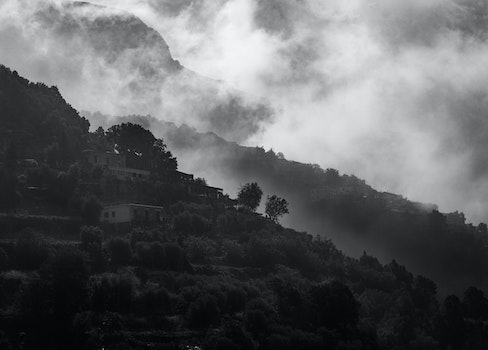 Landscape Grayscale Photography of Concrete Houses Surrounded With Trees