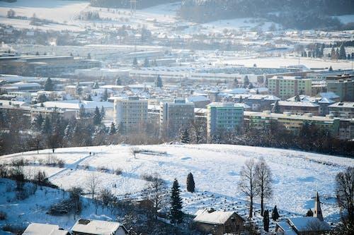 Immagine gratuita di alberi, città, coperto di neve