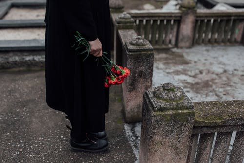 Person in Black Long Sleeve Dress Holding Red Flowers