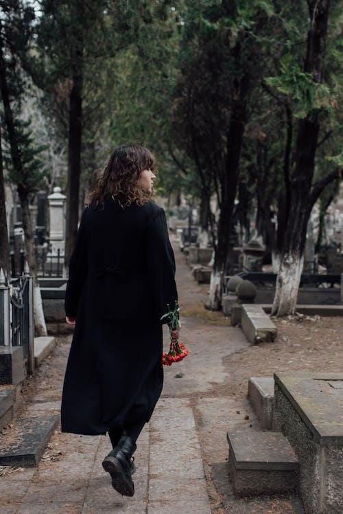 Gratis stockfoto met begraafplaats, bloemen, bovenkleding
