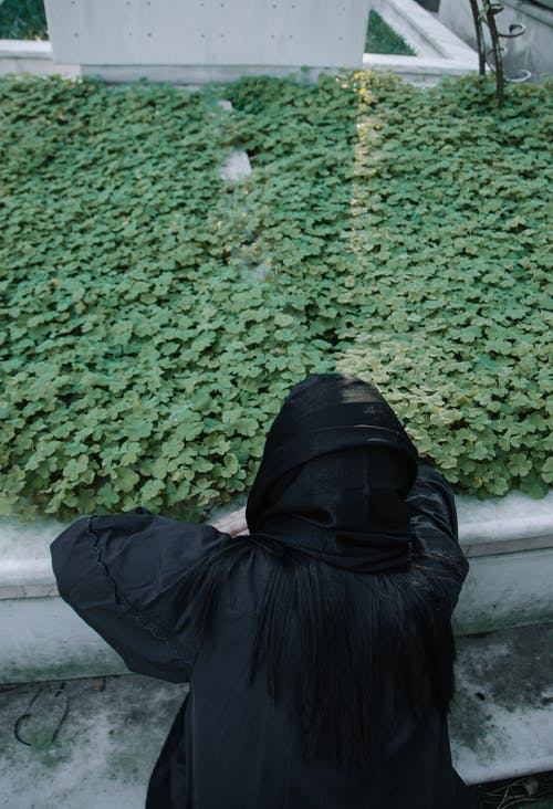 Back view of anonymous sorrowful female in black apparel against plant foliage in graveyard on sunny day