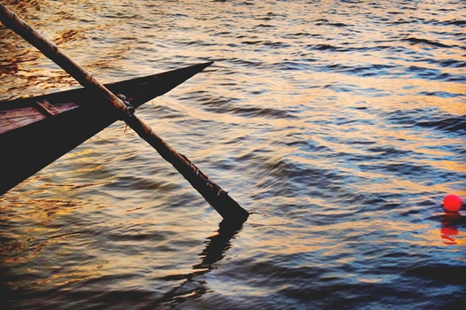High Angle Photo of Brown Boat Paddle