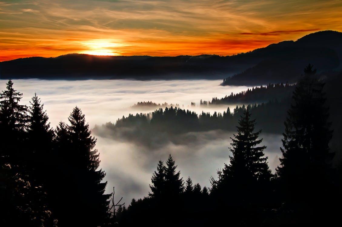απόγευμα, βουνά, δέντρα