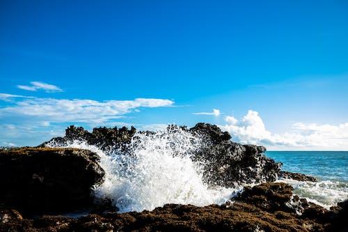 沿岸の自然, 海水, 自然が好きな人の無料の写真素材