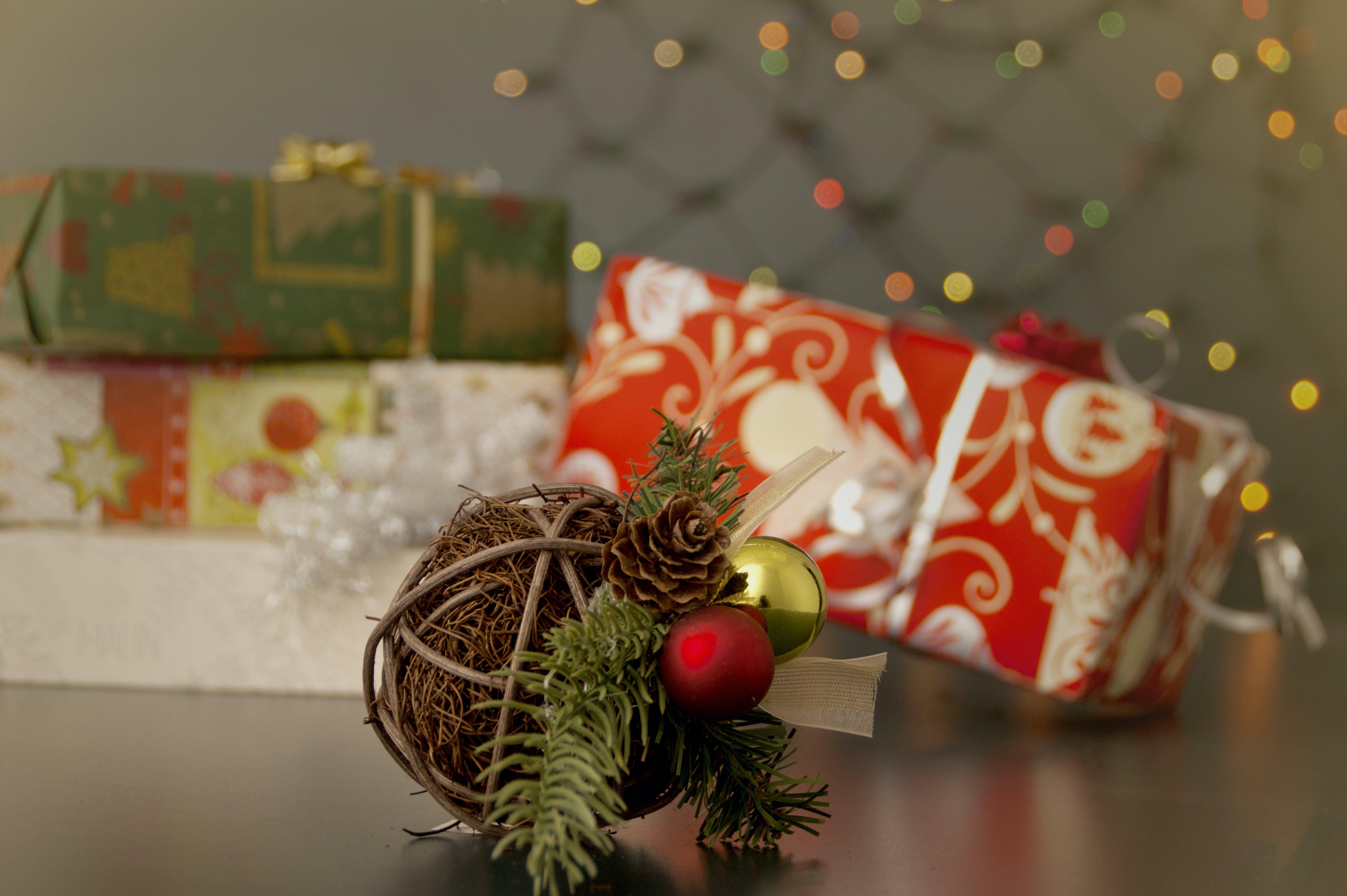 Základová fotografie zdarma na téma borová šiška, červená, dary, nový rok