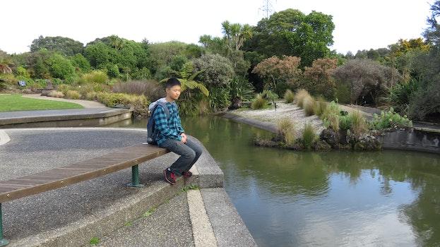 Free stock photo of relaxing, garden, lake, travel