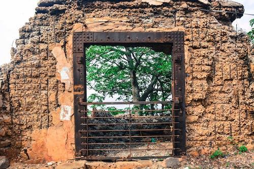 Free stock photo of door, iron, rust