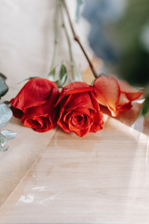 Red roses placed on glass table in floral store