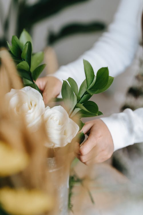 Florist arranging white fresh roses for gift