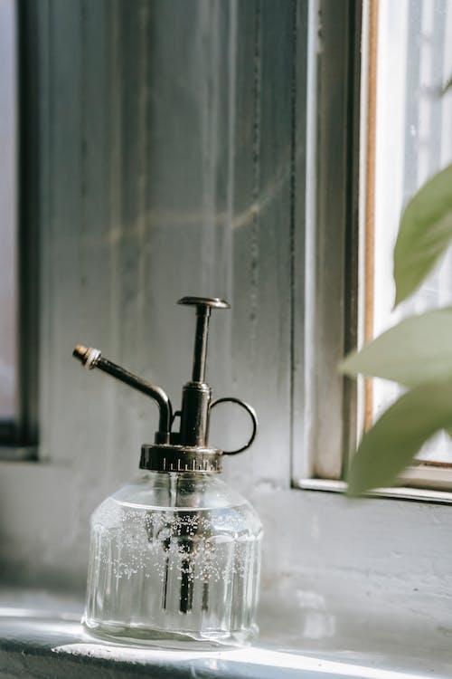 คลังภาพถ่ายฟรี ของ กระจก, กลางวัน, การดูแล