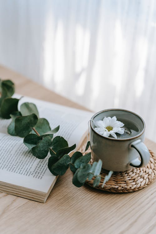 Cup of tea on table near book and plant stem