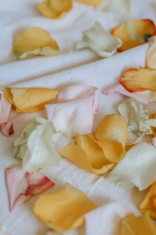 Different wavy gentle floral petals with pleasant smell on crumpled white cloth on blurred background
