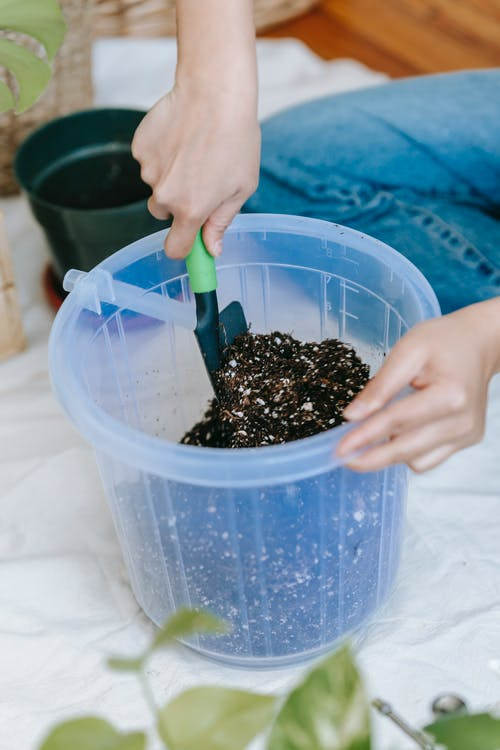 Crop anonymous female horticulturist loosening soil in plastic bucket with gardening trowel on floor in house