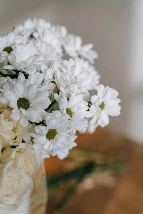 Bouquet with white chrysanthemums against light wall