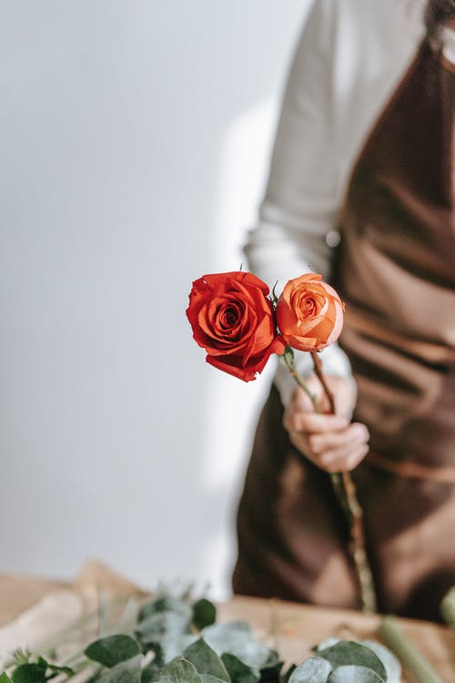 Crop unrecognizable female florist in casual clothes and apron arranging bouquet with red roses in light room in daytime