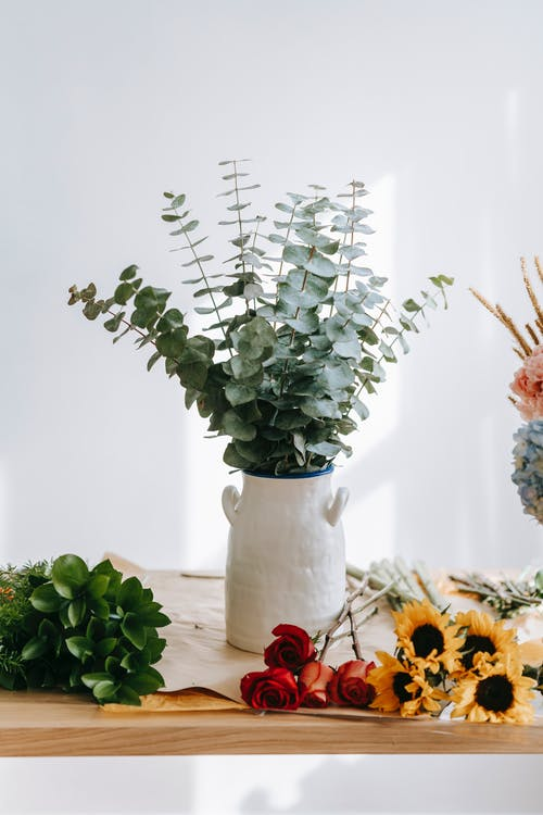 Foto stok gratis bejana, bunga, cinta