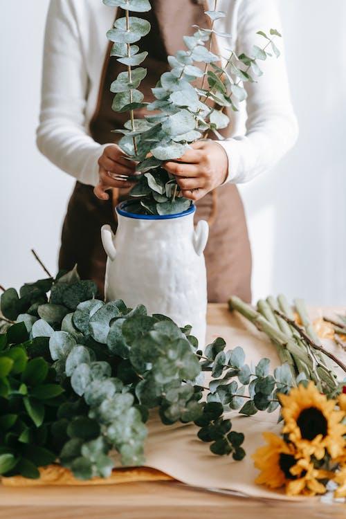 Foto stok gratis bunga, cewek, cinta
