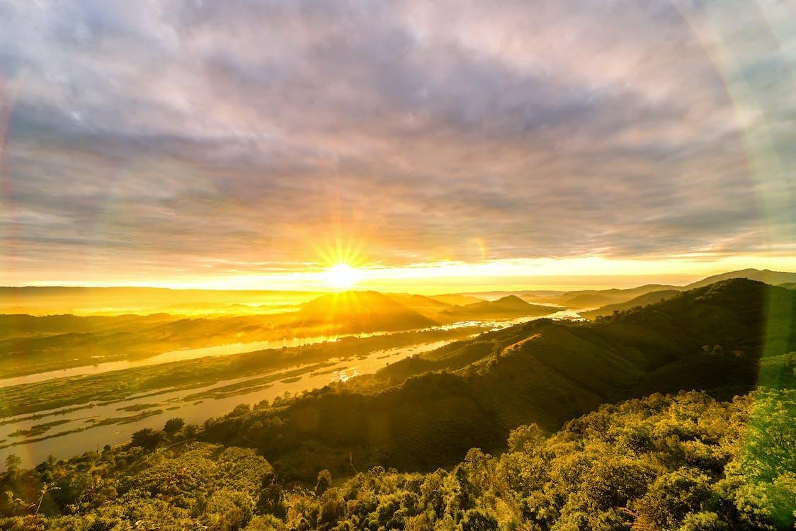 ดวงอาทิตย์, ต้นไม้, ท้องฟ้า