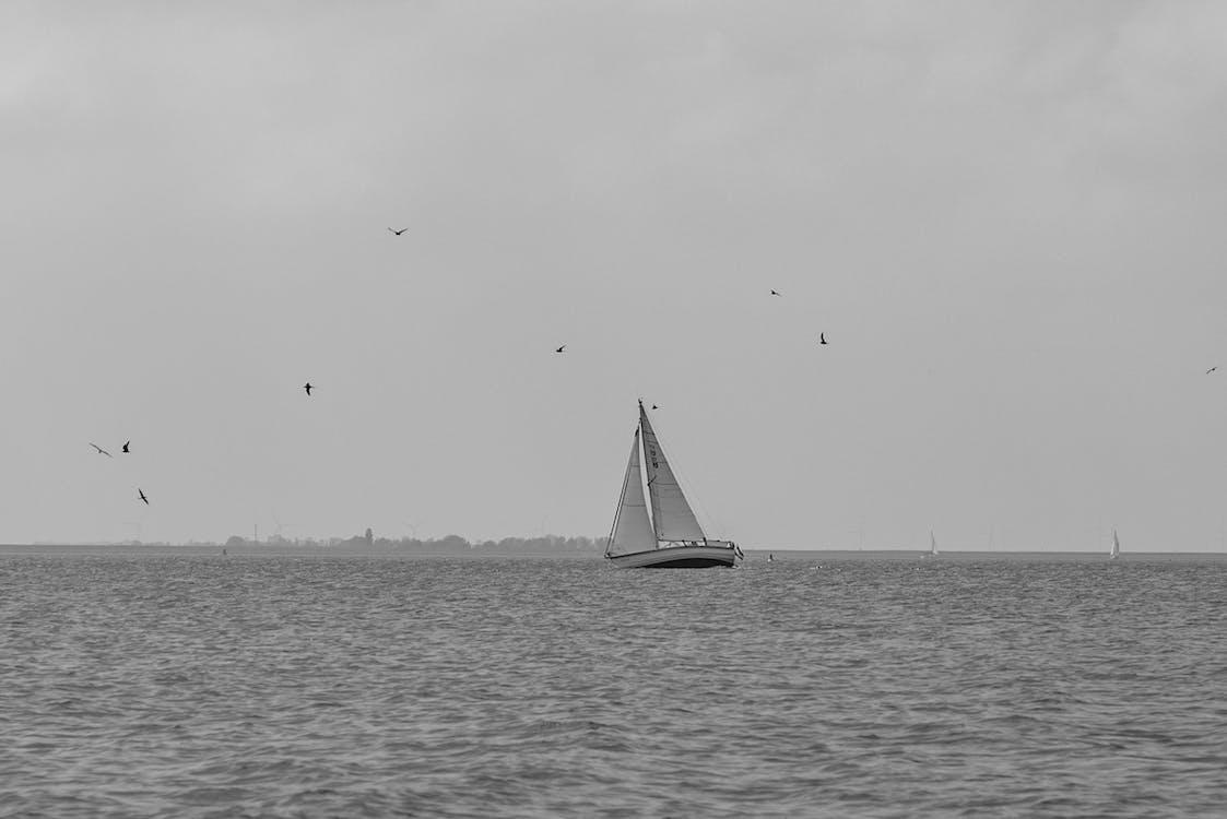 Free stock photo of black, boat, cloud