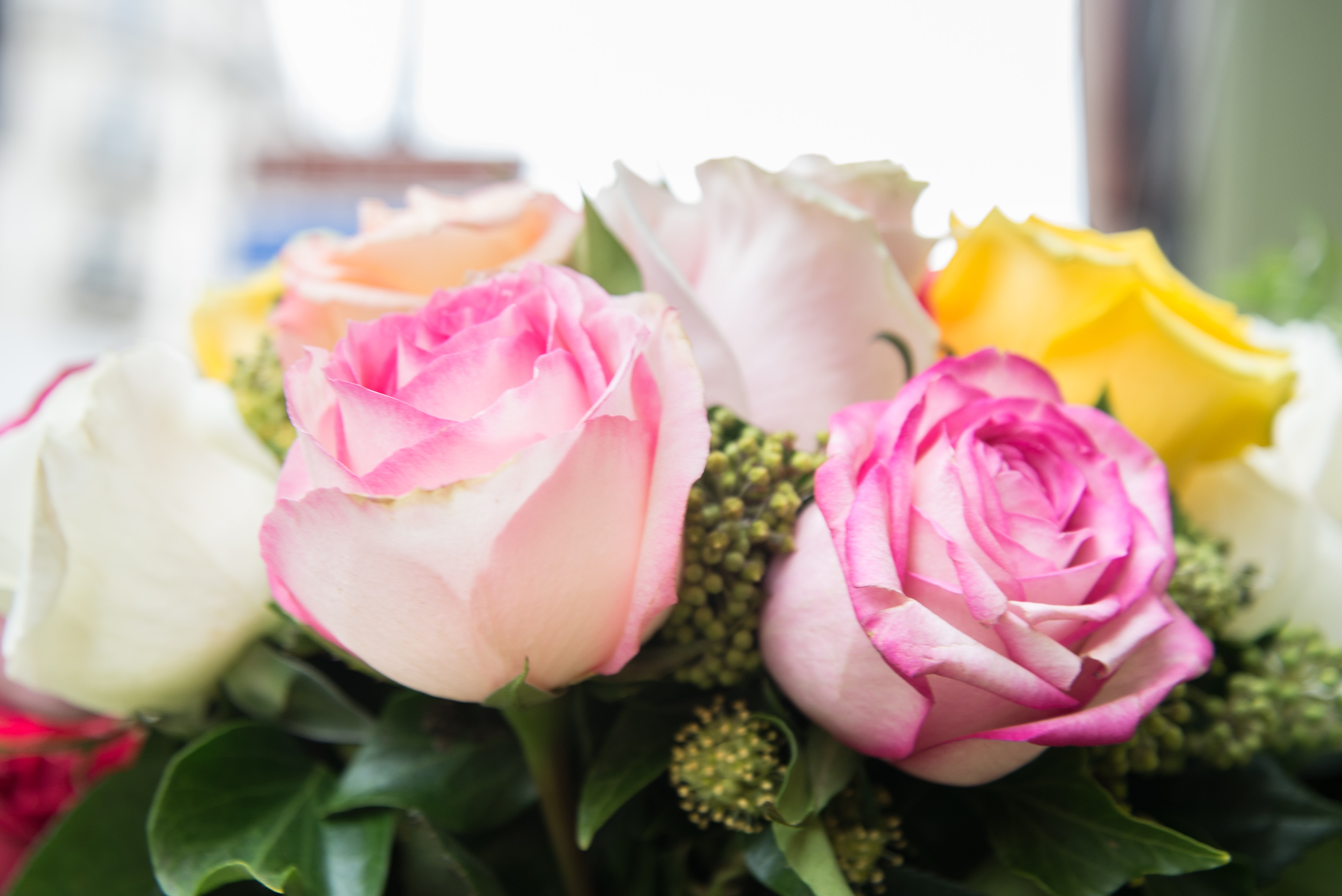 Pink White And Yellow Flowers Free Stock Photo