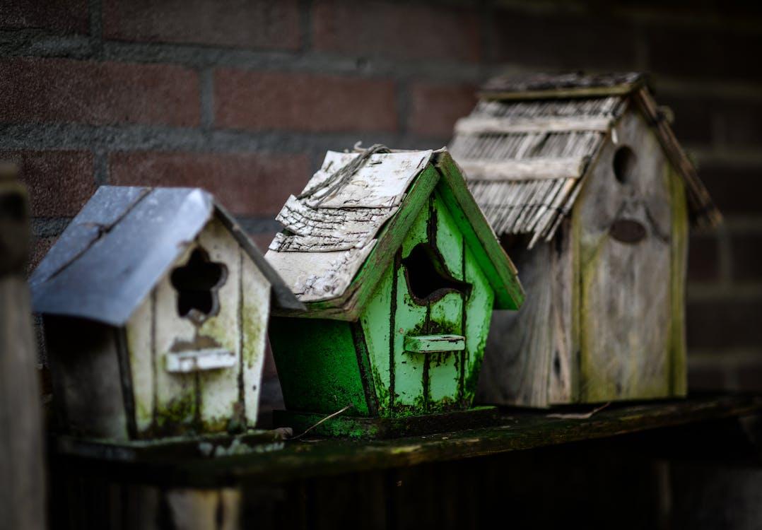 Free stock photo of abandoned, broken, houses