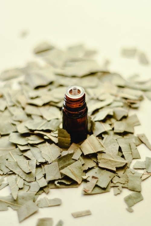 cam şişe, dikey atış, kuru yapraklar içeren Ücretsiz stok fotoğraf