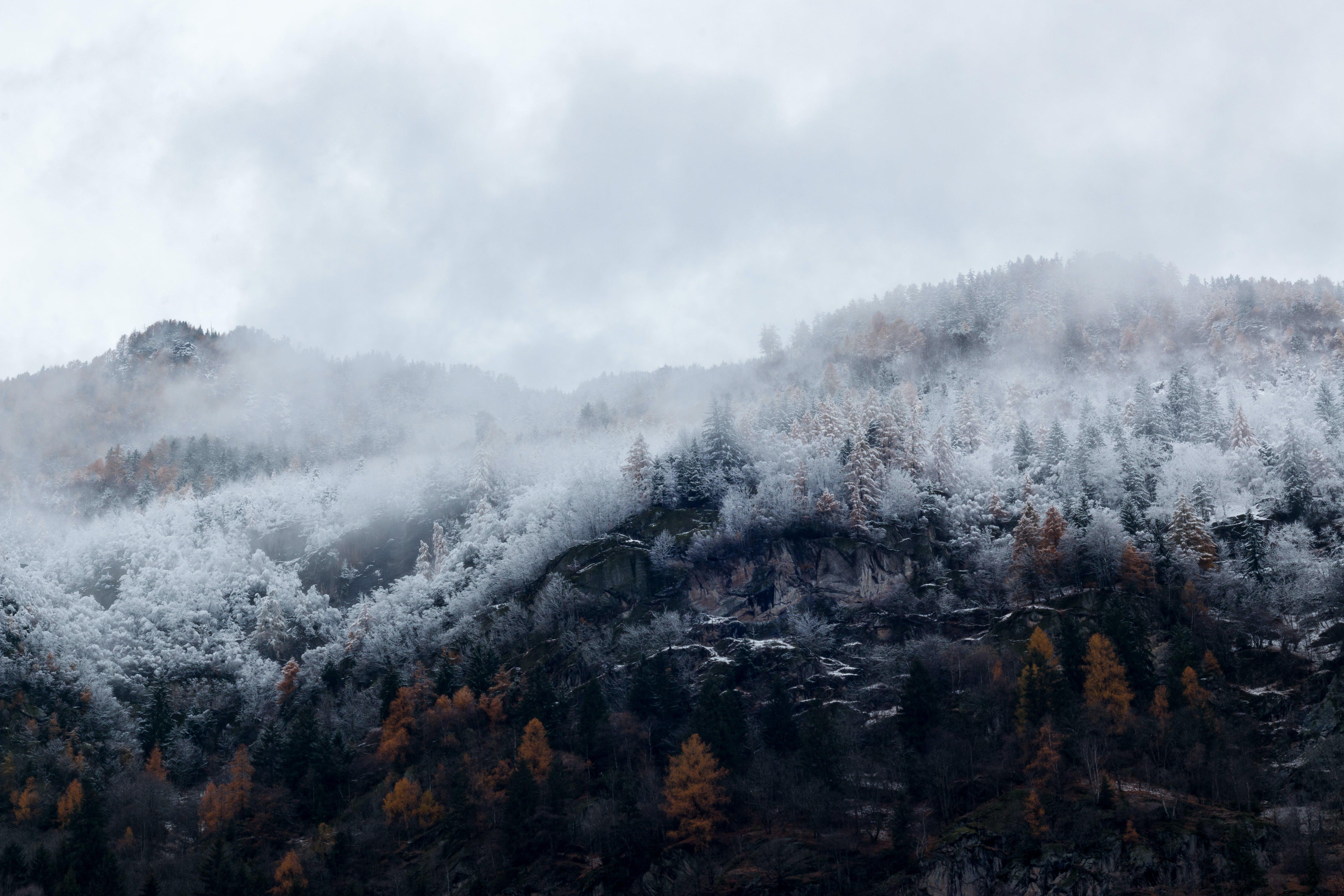 bjerg, dagslys, dis
