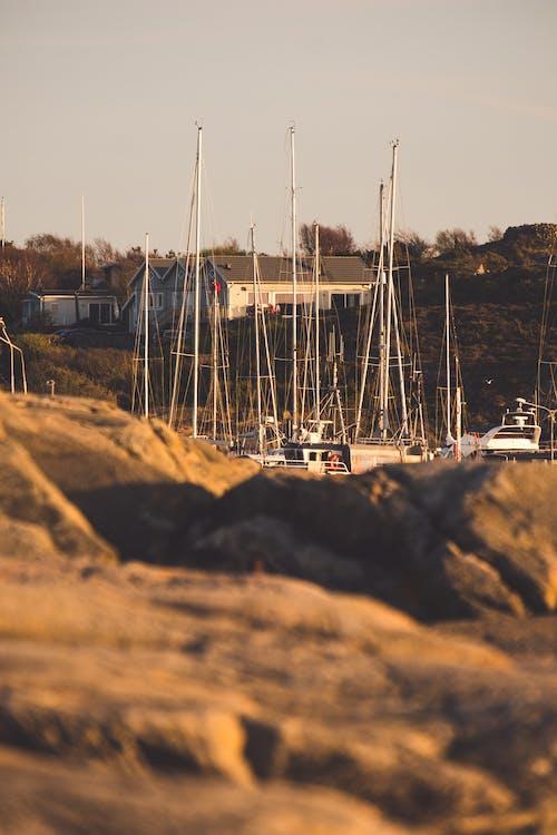 Free stock photo of port, rocks, sailboats