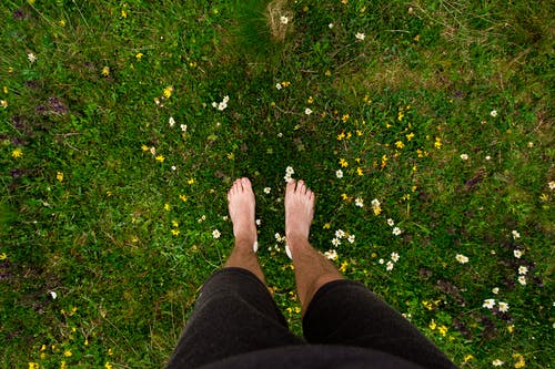 Person in Black Pants Standing on Green Grass Field