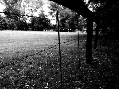 Silhouette View Of Fence