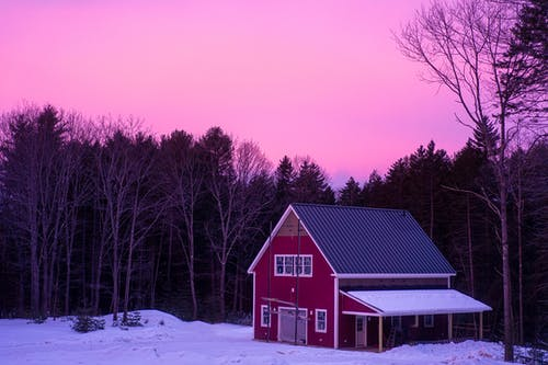 Wooden residential building located on snowy ground near dense woods with tall trees in rural area against pink sundown sky in winter time