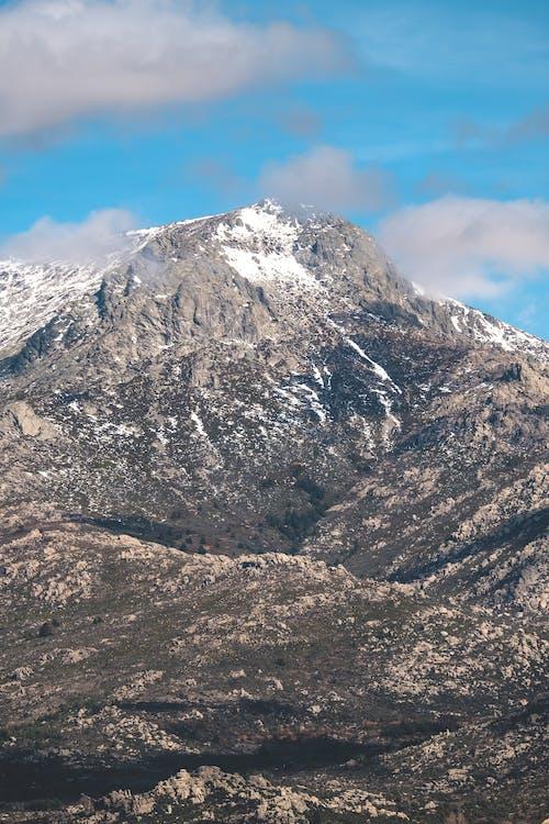 Immagine gratuita di alberi, altitudine, alto