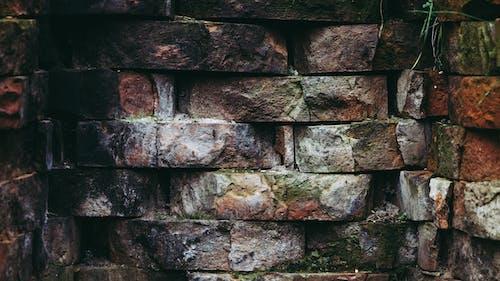 Darmowe zdjęcie z galerii z brudny, cegły, chropowaty, mech