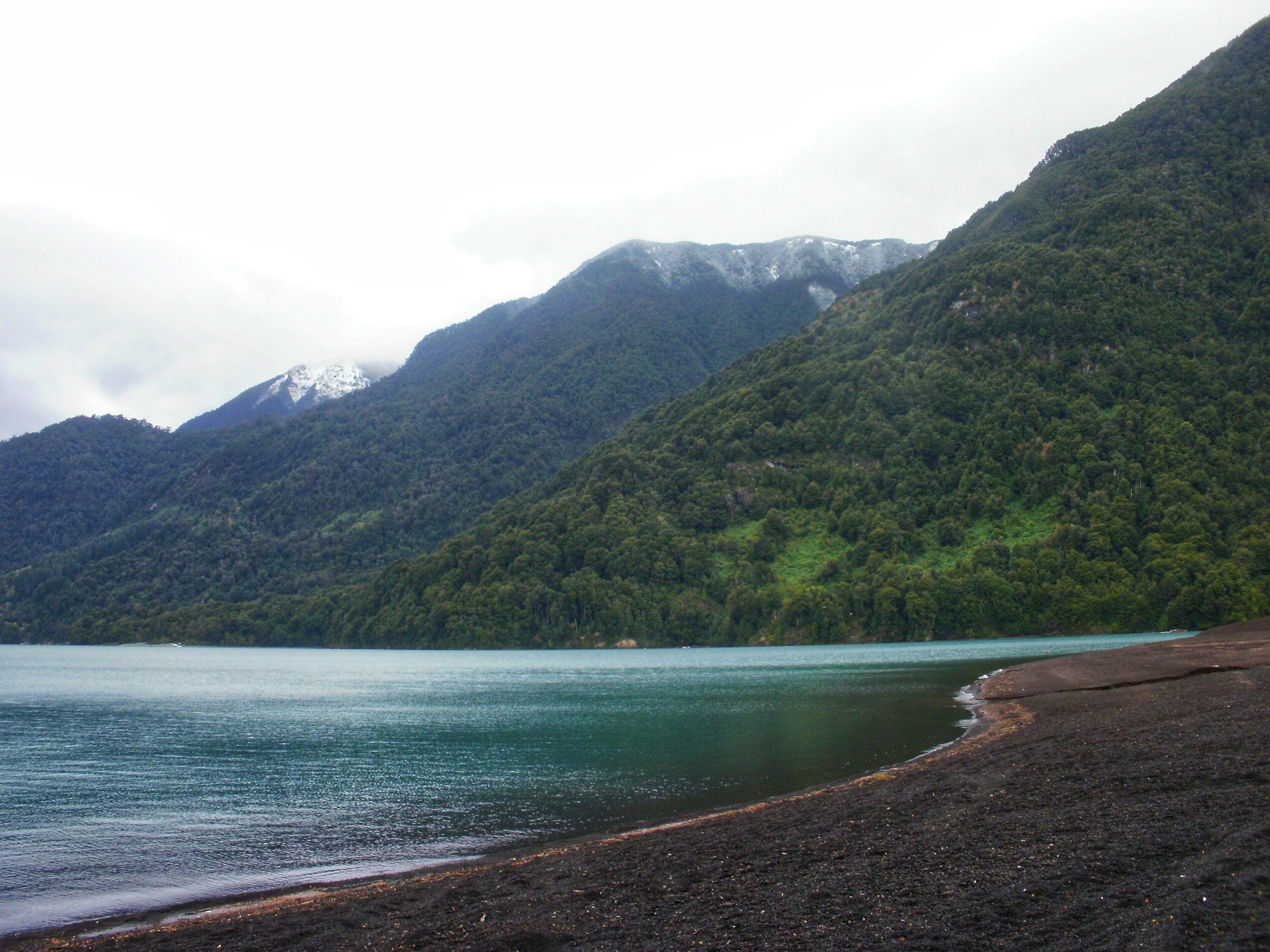 Free stock photo of beach, forest, lake, mountain