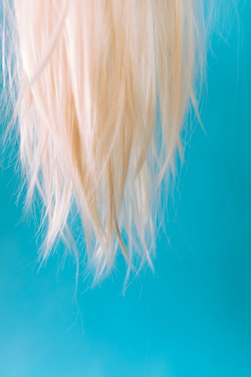is hair a dead cell