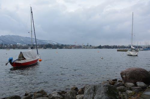 Free stock photo of boats, lac, mountain, switzerland