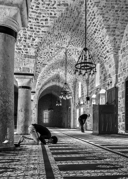 Foto d'estoc gratuïta de blanc i negre, gall dindi, mesquita, Turquia