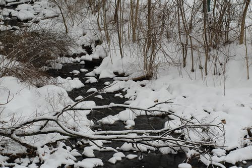Free stock photo of freshwater, iced, snow