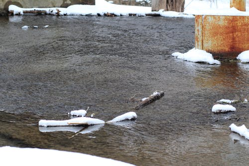 Free stock photo of freshwater, ice, snow