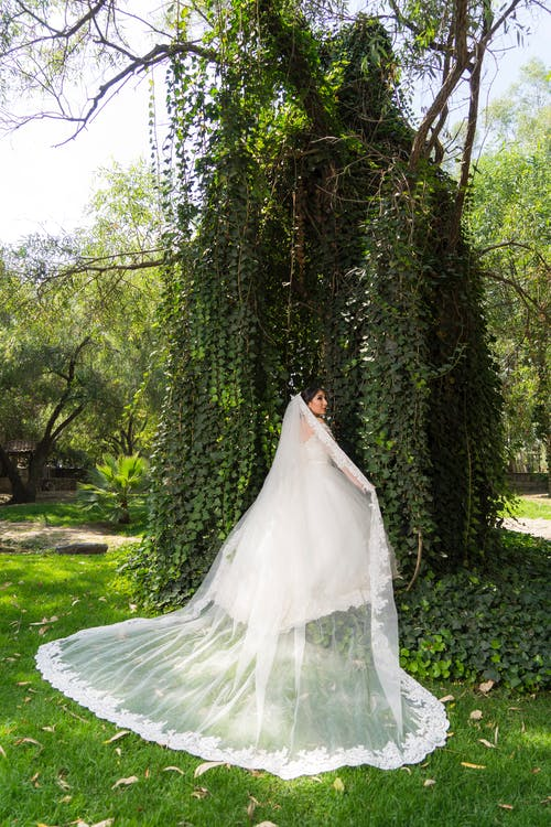 Woman in White Wedding Dress Standing on Green Grass Field Surrounded by Green Trees