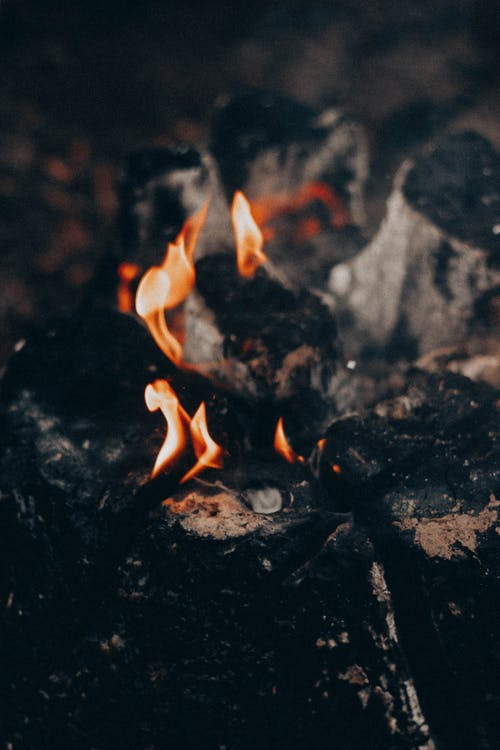 Bonfire with flame and burnt wood